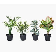 GULLEIF Artificial Plant (Green)