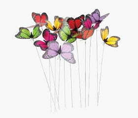 BUTTERFLY Wire Set