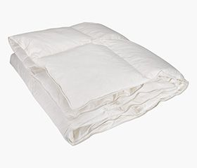 ALTA 100% Cotton Duvet