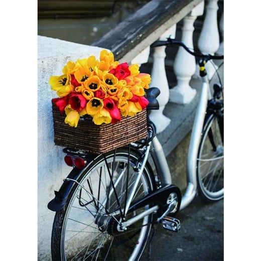 toile imprimée bicyclette
