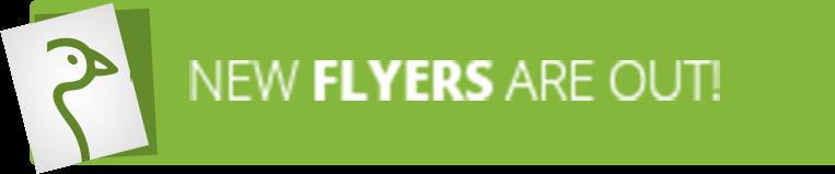 New Flyers